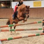 Jezdci můžou mít i vlastní koně